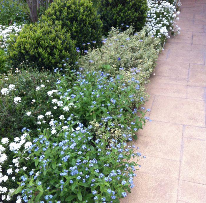 3planificar-jardin-fengshuiparachile